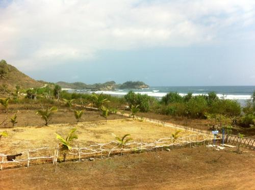 Photo Land2