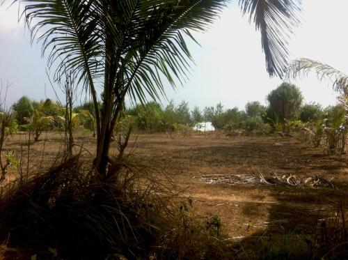 Photo Land3